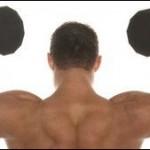 Diese Basis Fitness Übungen bauen die meisten Muskeln auf